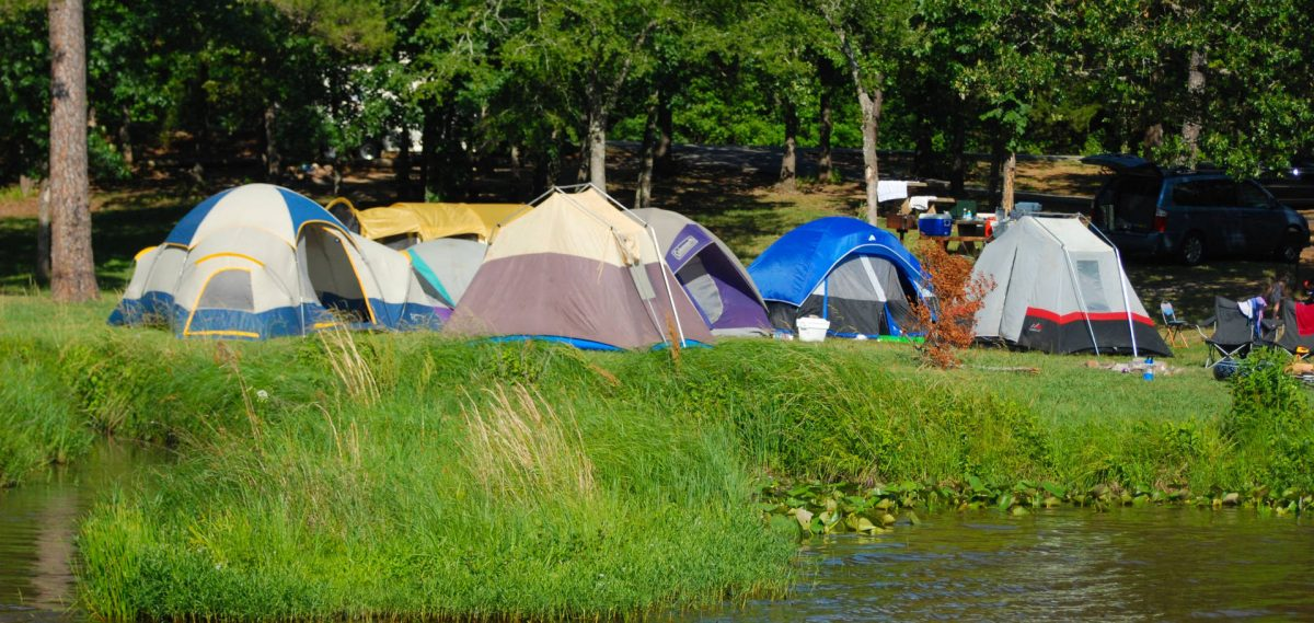 Adventure Camps - Enhance The Personality of Your Kid